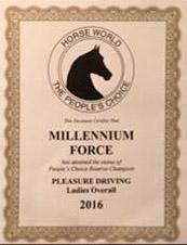 Millennium Force GCH