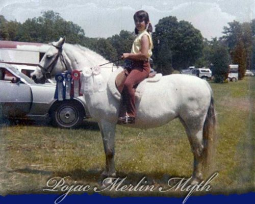 Pojac Merlin Myth
